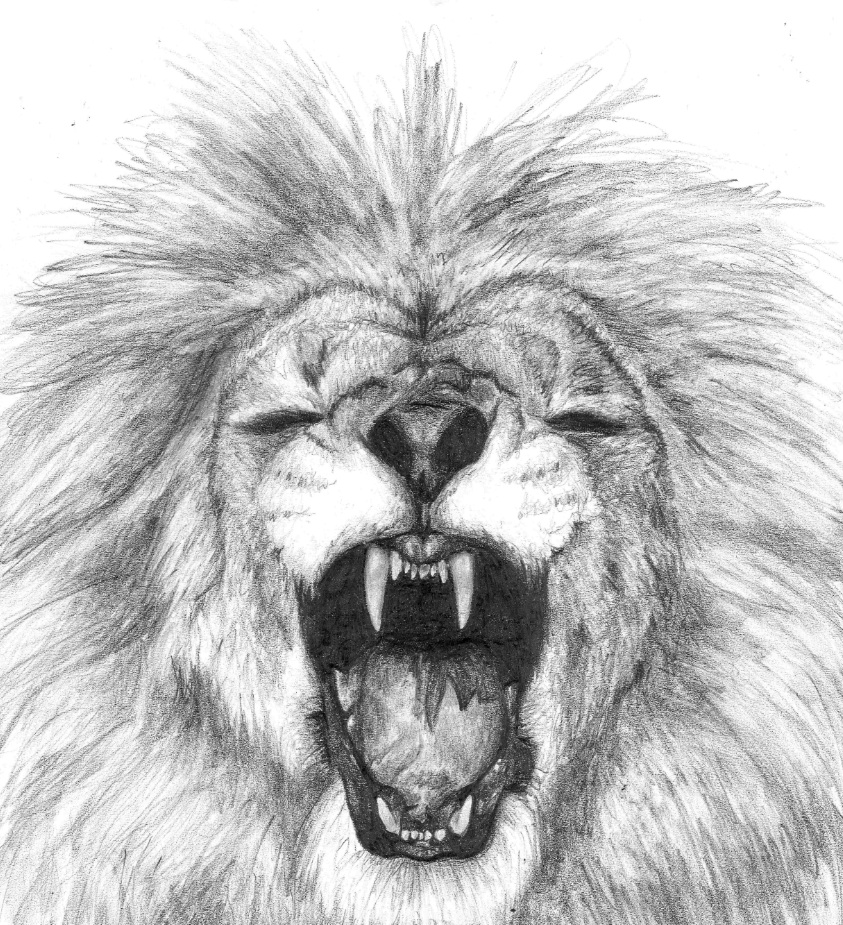 Lion by Meodih