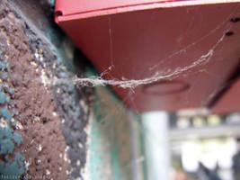 Spiderweb by TheCosplayVlogger