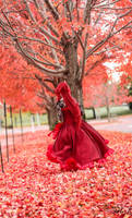 Ballgown Grell Fall Shoot 1 by TheCosplayVlogger