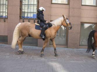 a finnish cop
