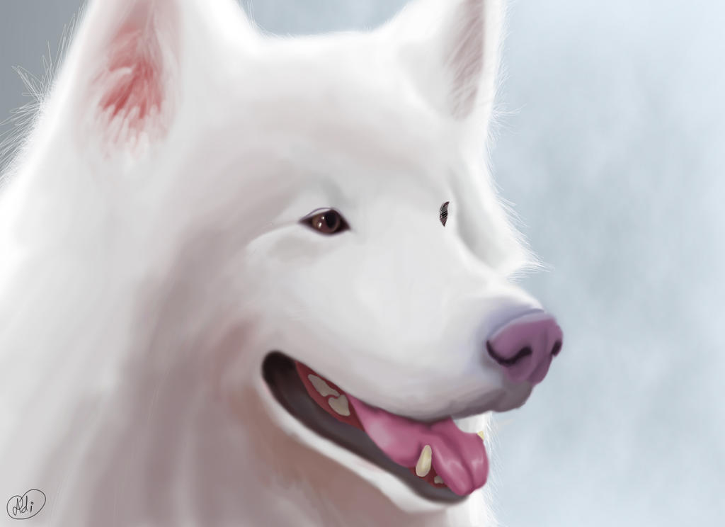 Shading Practice - White Fur by Did2009