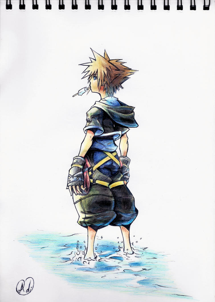 Sora by Did2009