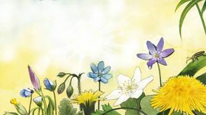 Flowers reaching the sun
