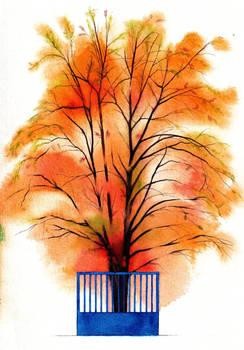 Hospital's gate