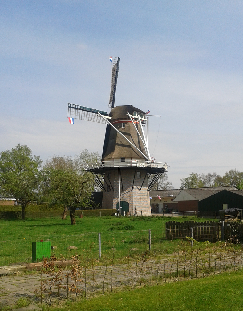 Dutch pride by Marlous2604