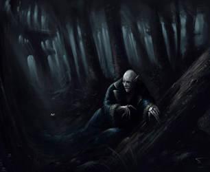 Nosferatu's Night Hunt by dominuself