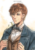 Newt Scamander by Devil-Nutto