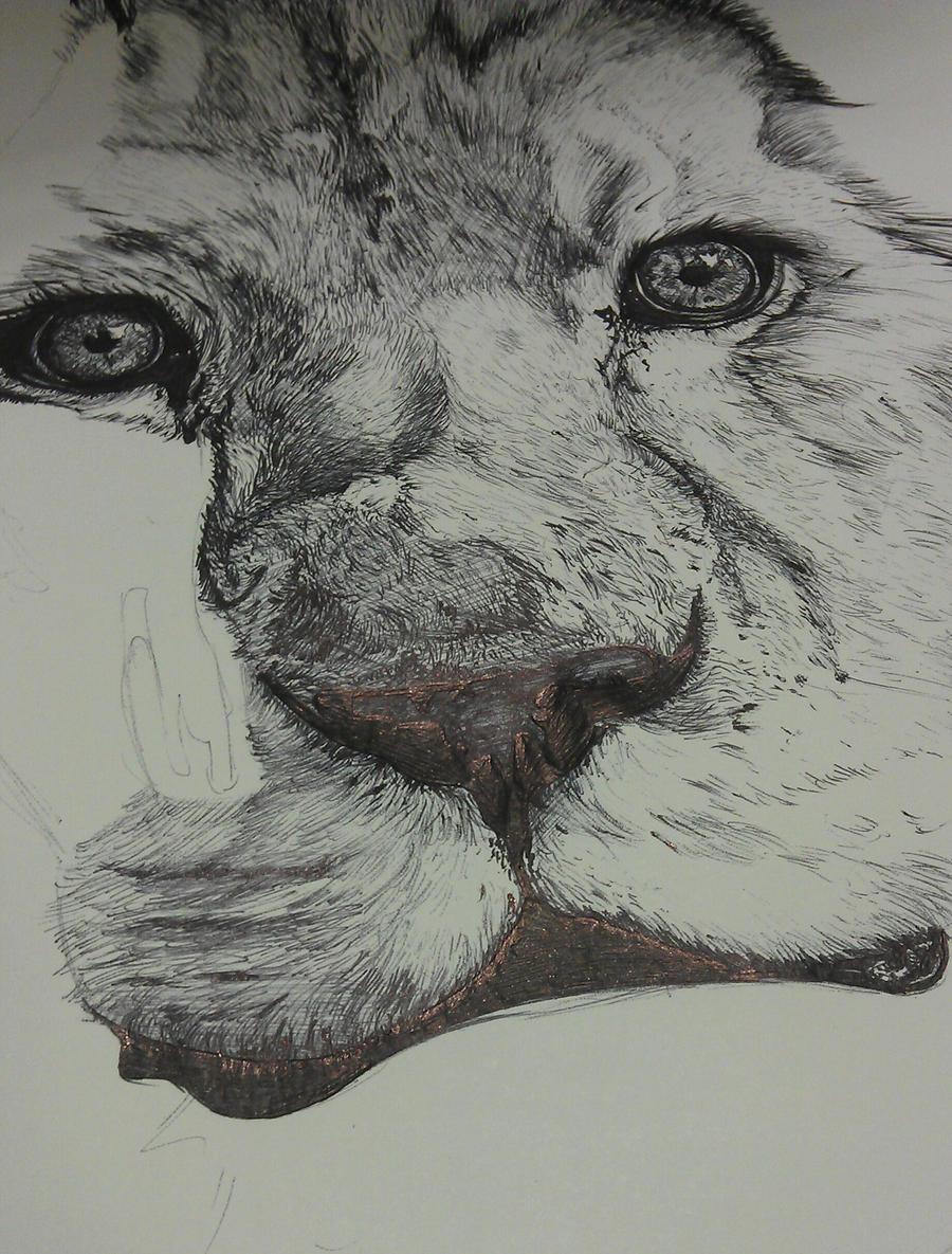 Biro Lion - WIP by Catriinaa