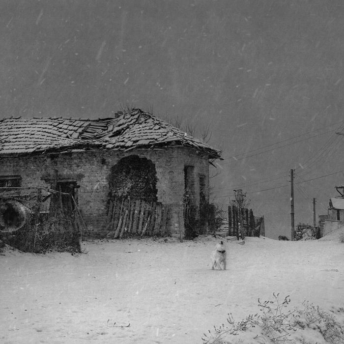 Increíbles Fotos [Blanco y Negro]