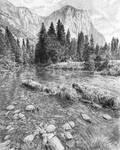 Yosemite Landscape Study