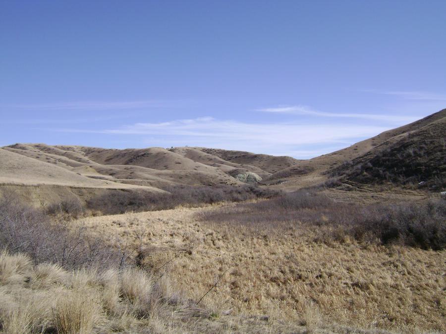 Dry Grass Desert by mysticagirl on DeviantArt