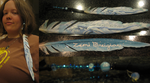 Dreigiau Feather Clip