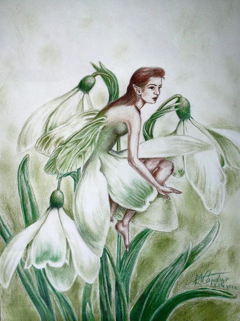 Leucojum aestivum/vernum Fairy by NemoraliaEgnever