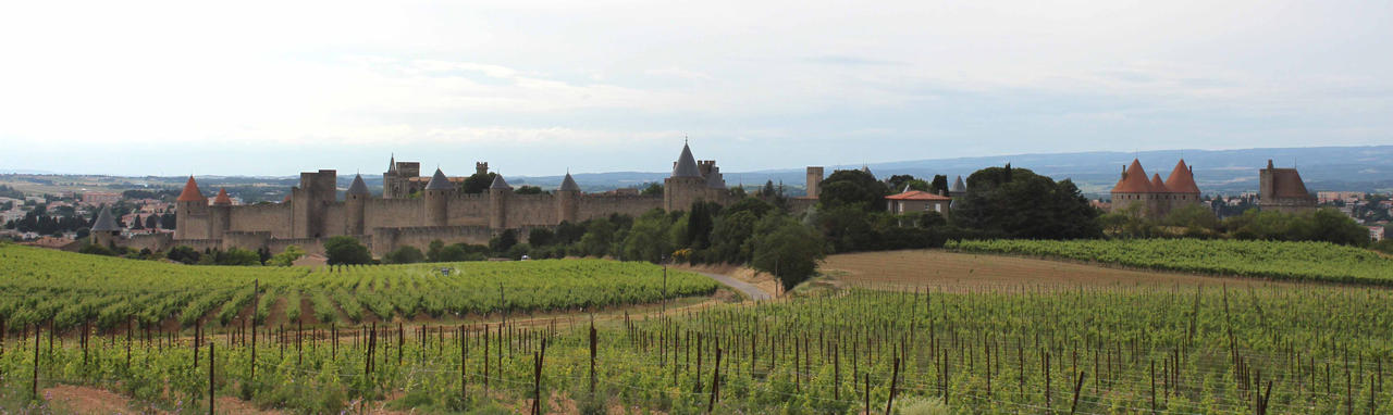 Carcassonne I by Scipia