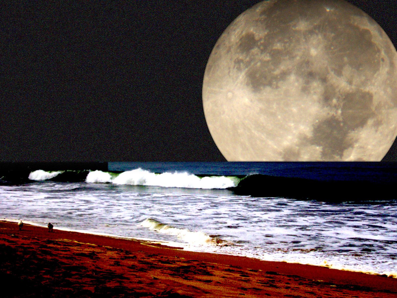 pa mia part: Beach wallpaper, post 7