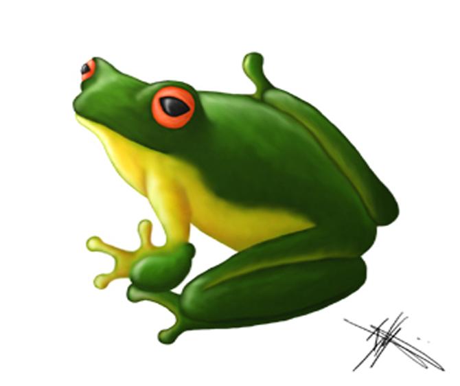 Tree Frog by YaggyDigital
