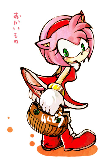 Amy2 by riku-dou