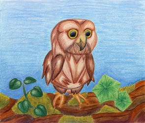 Baby owl by roslaug