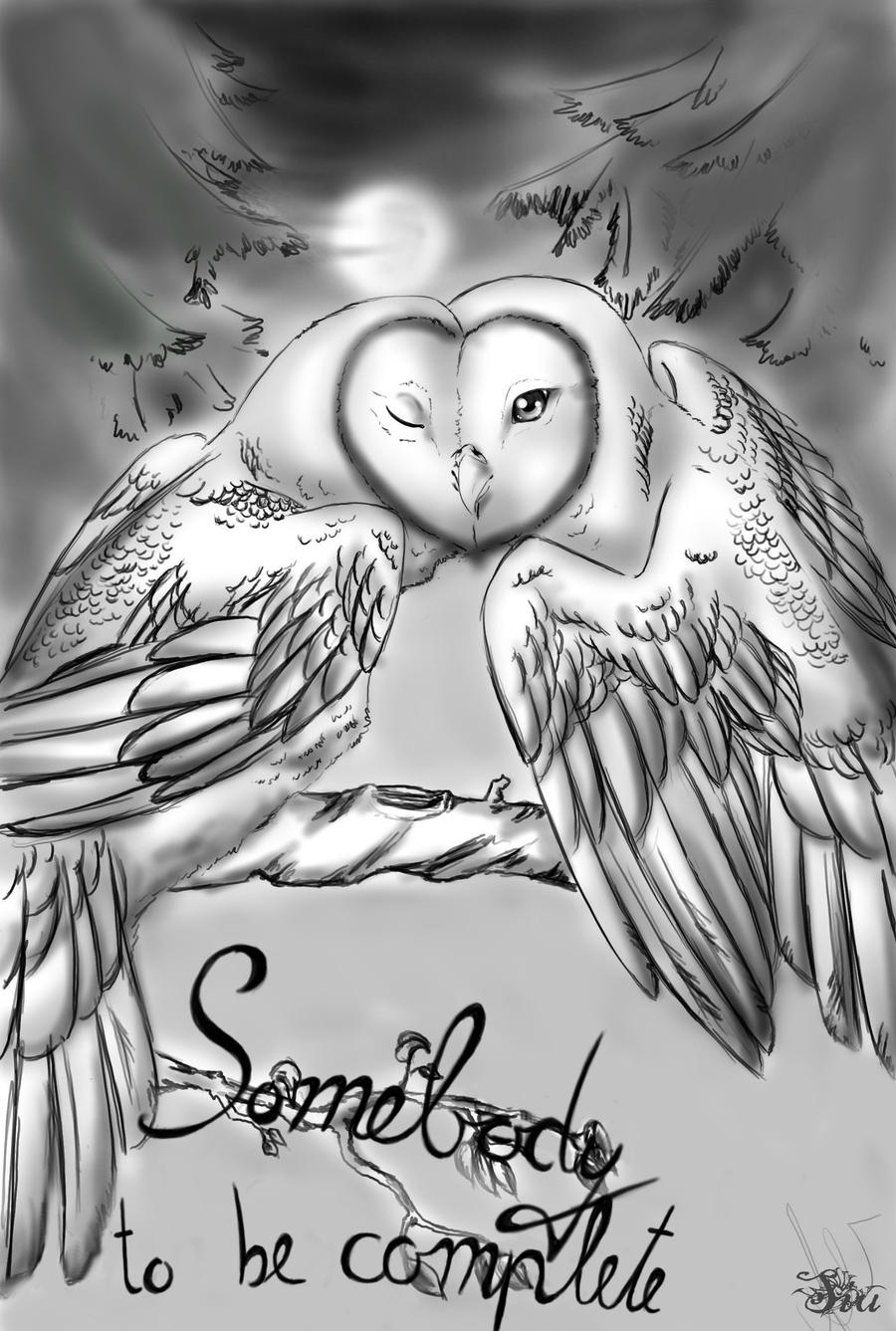 Cute owl love drawing - photo#20