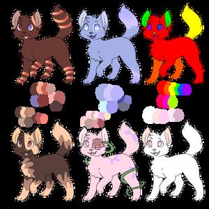 Cat adoptables!