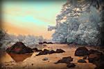 Baler's Hidden Shore