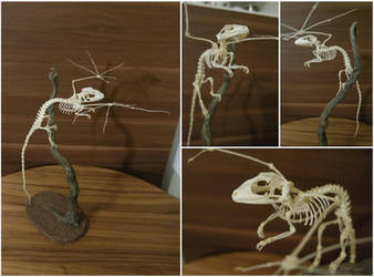 Dragon skeleton: when fantasy becomes reality by Exifia