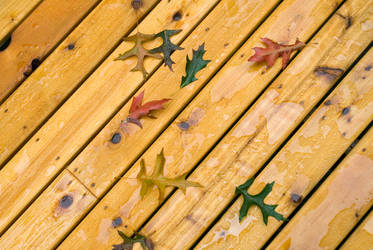 Fall Deck by snakstock