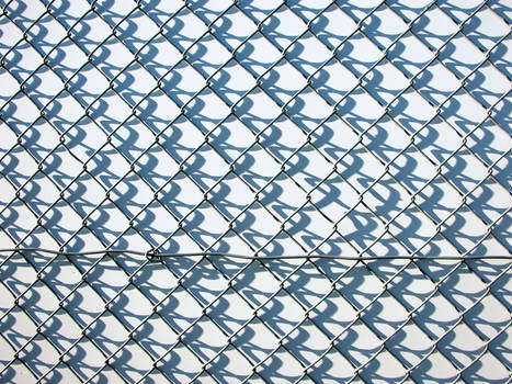 Chain Link 04