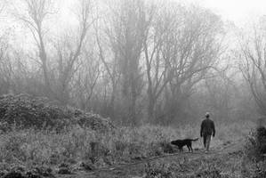 Misty Walk by snakstock