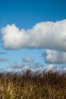 Coastal Clouds by snakstock