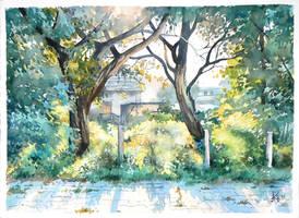 Strzelecka Street by mashami