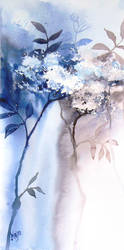 Edelberry by mashami