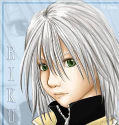 KH2 Riku -For Jenki-