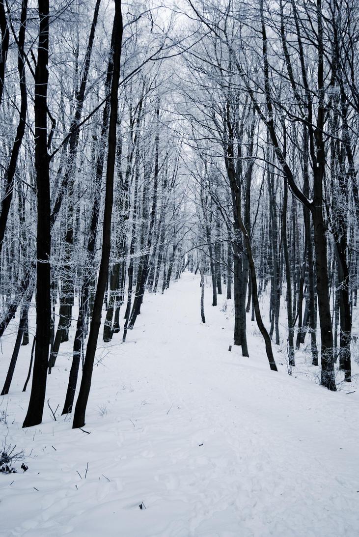 Snow landscape by iisjahstock