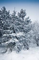 Snow landscape 2 by iisjahstock