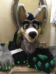 thunder wolf partial