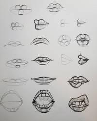 Lips Study