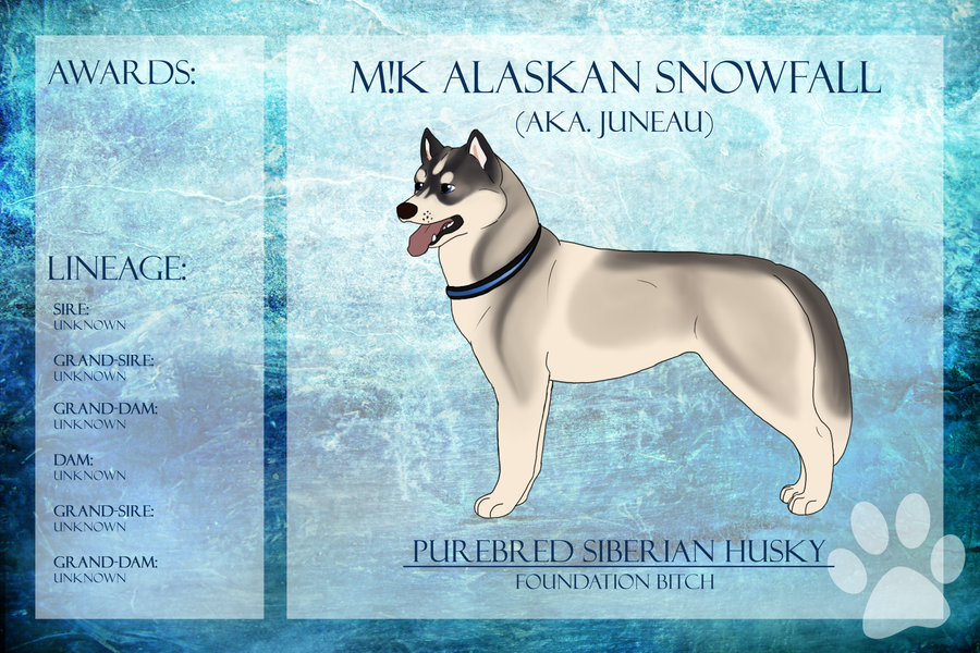 M!K Alaskan Snowfall Ref Sheet by xMush-Kennelsx