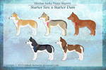 Siberian husky Puppy Imports - 1/5 Left