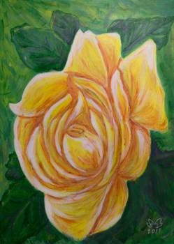 Rosa amarela con eiruga