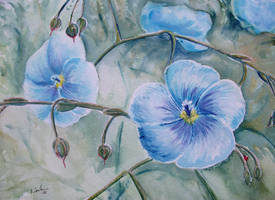 Flower 2 by imcy