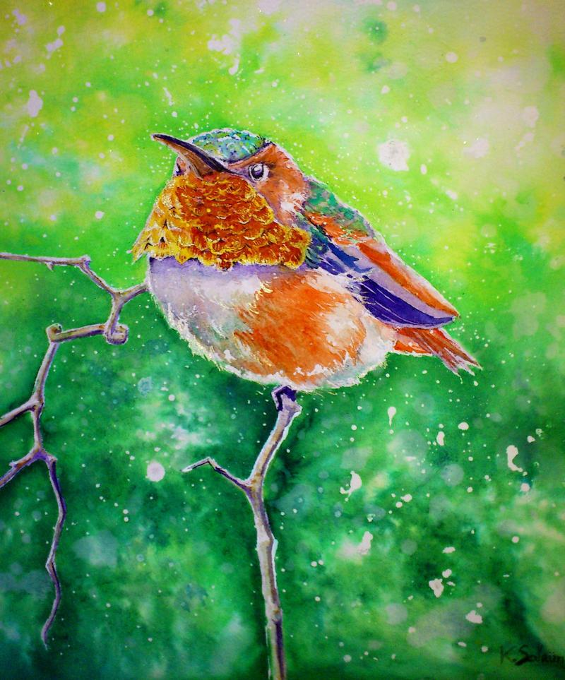 Colibri by imcy