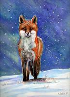 Fox by imcy
