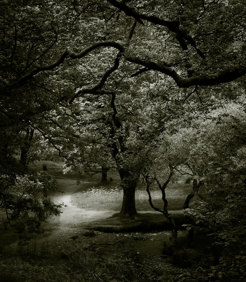 A Quiet Place by Gaspode5