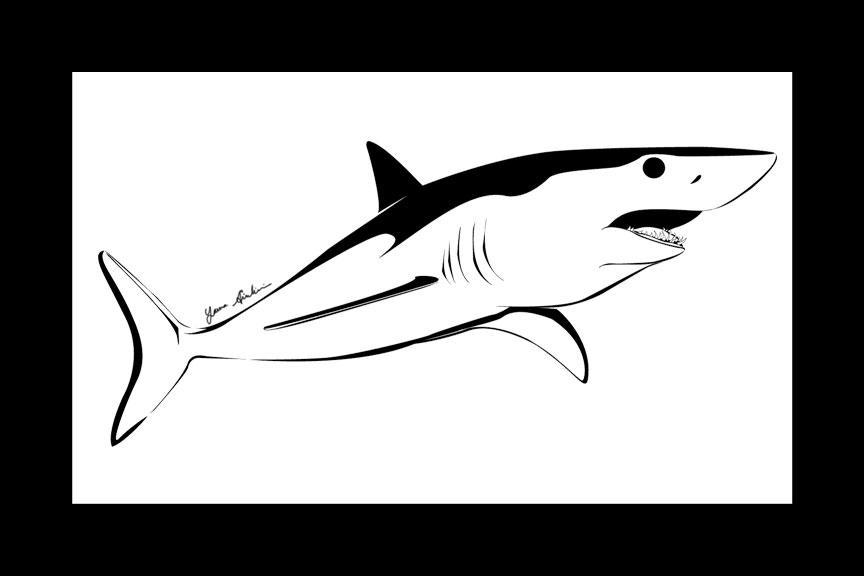 Mako Shark by l...