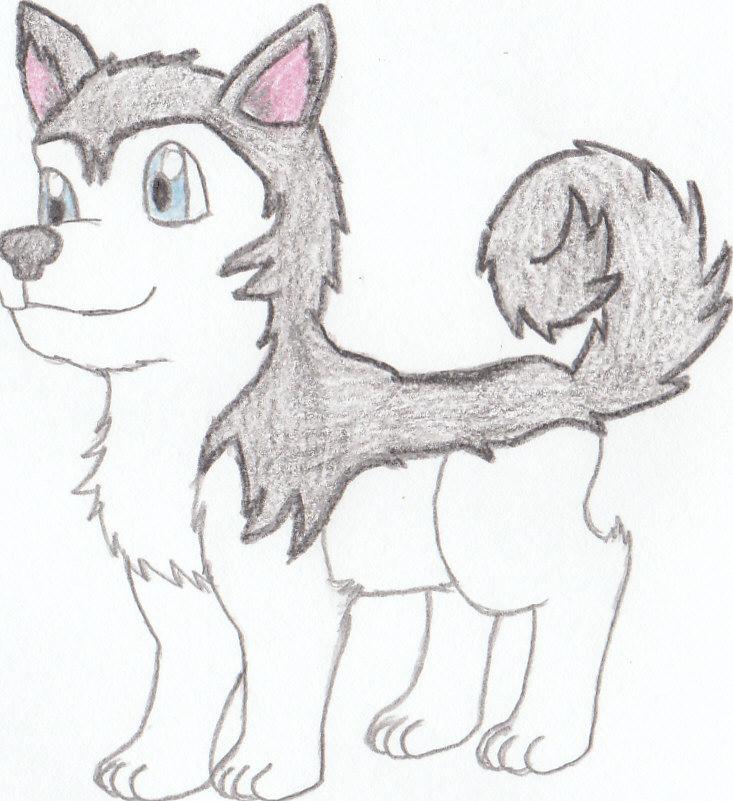 Chibi Husky by Soki-AECute Husky Puppy Drawings