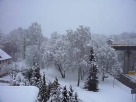 Winter II by Bj83