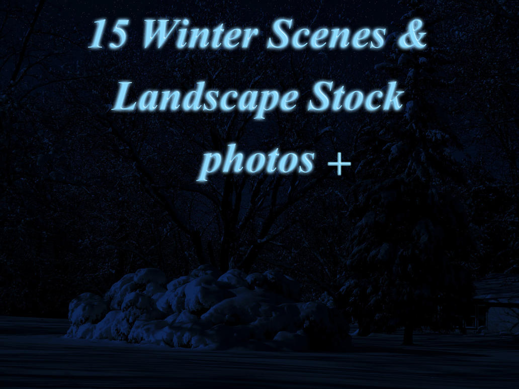 Winter Scenes and Landscape Stock by Aquilla-Whingate