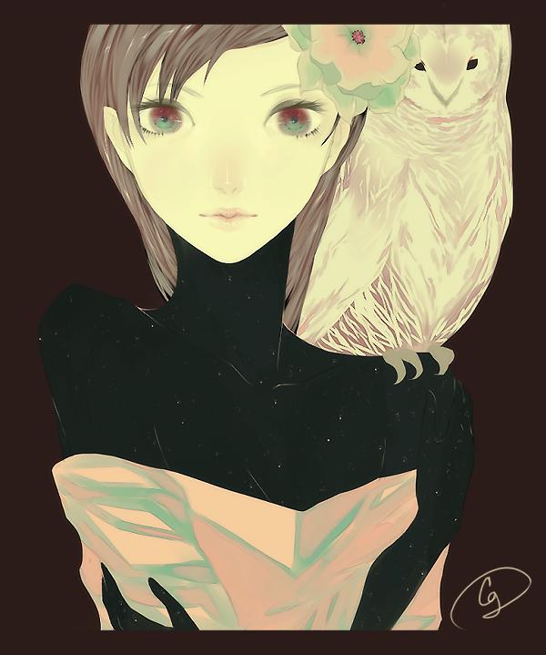 owl by KoalaExpress