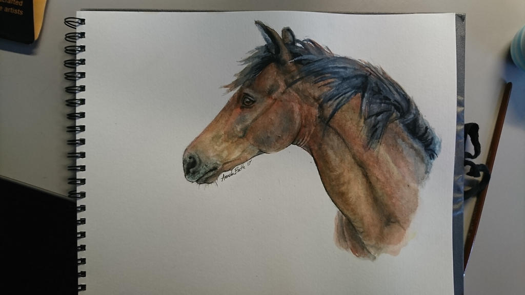 Bay watercolor horse by QueenAnneka